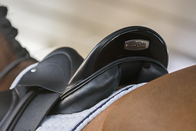 Harry Dabbs Saddles close-up
