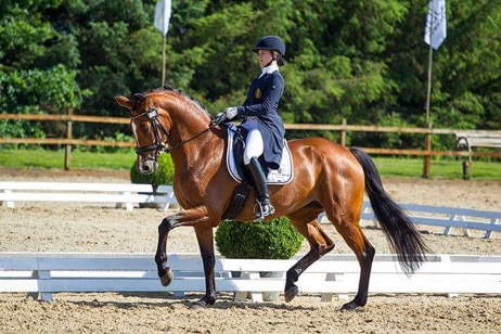64,56% tijdens Dressage@Blom in Inter ll